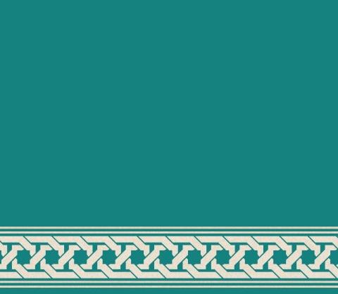 S132 - KOYU ÇİNİ